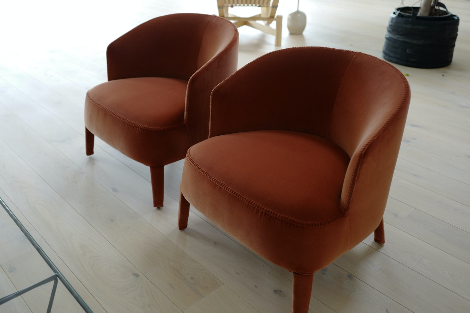Febo Lounge Chairs on Sale